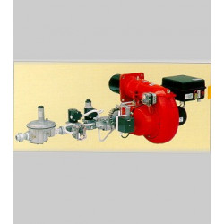 QUEMADOR GAS GASX 2/2 CE TL RAMPA 3/4-FS25