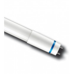 PHI MASTER LEDTUBE VALUE 600MM 10W 150° G13 6500K 1050LM
